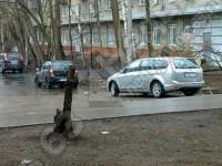 Офисного помещение 288 кв.м  на ул.Советской Армии/ ул.Блюхера